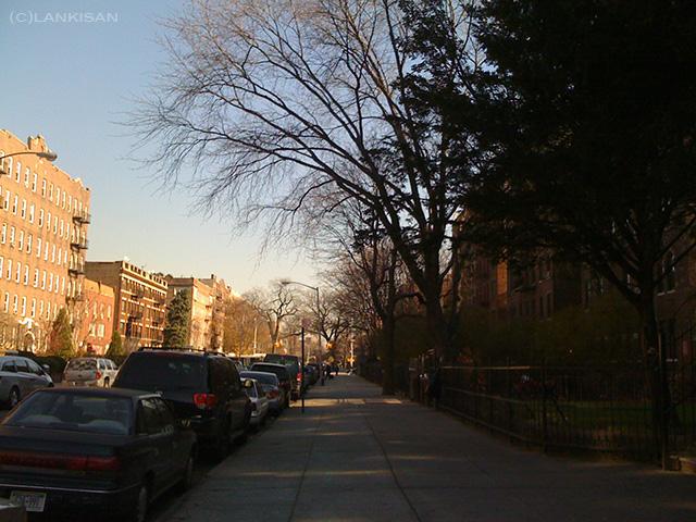 Brooklyn streets.