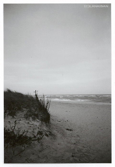 Long Island, southern shores. I do love that place. lomo.
