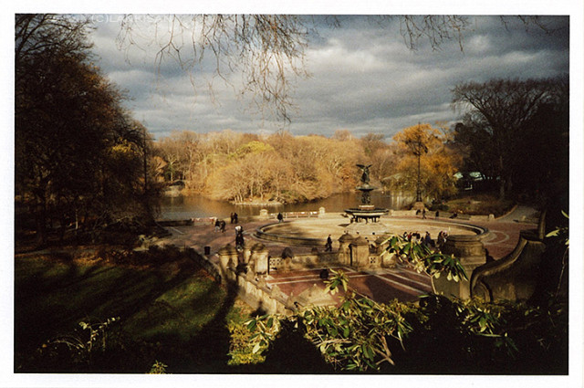 Sunny spot at the central park in the beginning of December. lomo