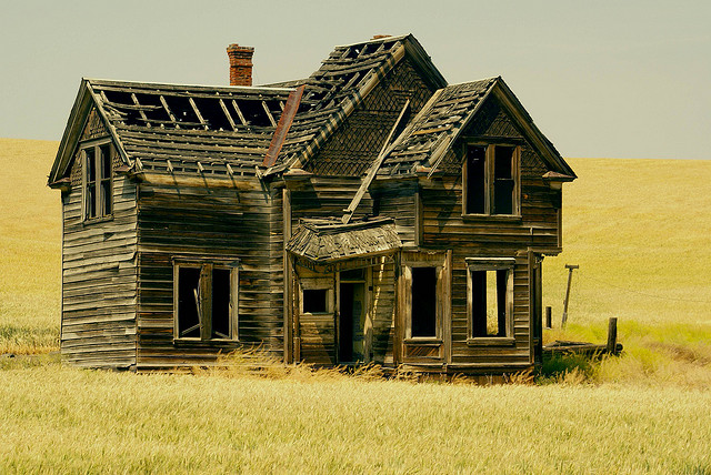 """I revisited this abandoned house for the second time in 30yrs. i was surprised it was still standing and was in such good shape. The wheat field surrounding the house is really this bright yellow in july. On Emerson Loop Rd. near The Dalles.......Central Oregon"". Photo by swainboat"